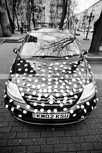 Popularne Obiekty Dekoracja Samochodu Na Wesele Ufd61 Usafrica